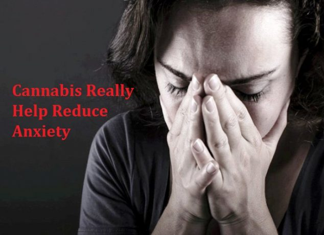 Cannabis Reduce Anxiety