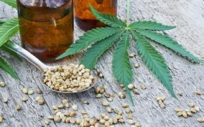 Superfoods for CBD