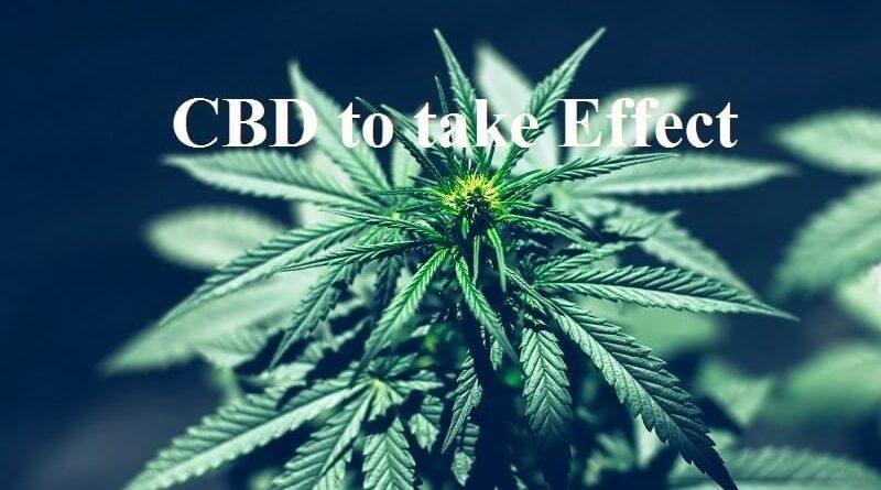 CBD effect