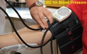 CBD for Blood Pressure