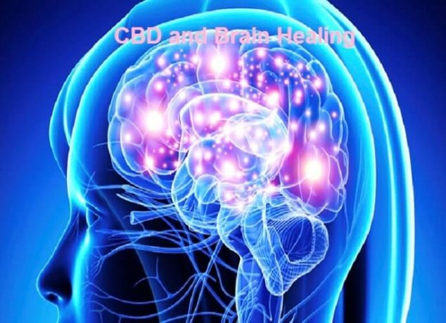 CBD and Brain Healing